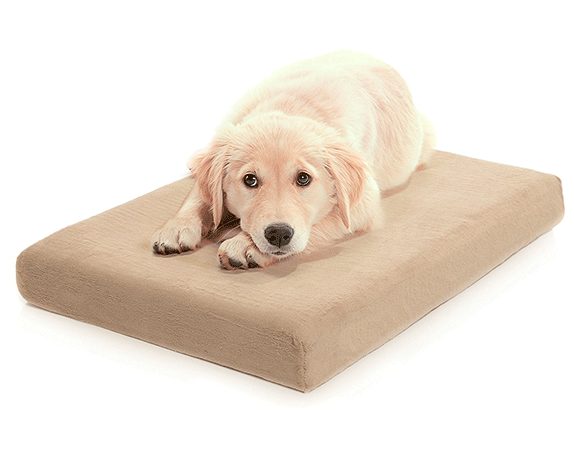 Milliard Premium Orthopedic Bed