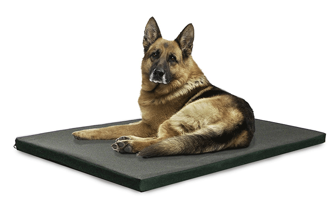 Ballistic Dog Bed Cover