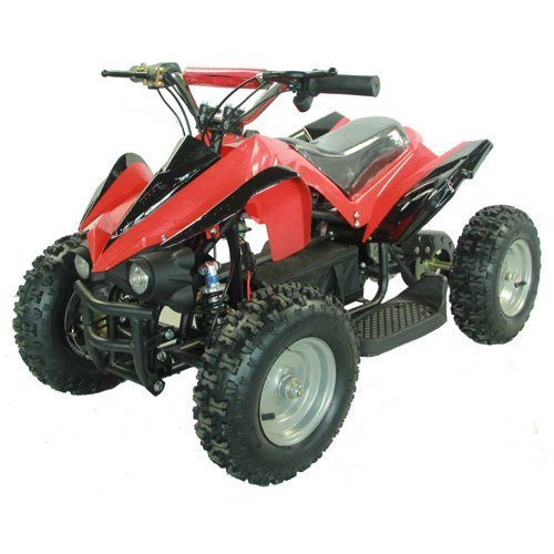 Youth Electric Kids Quad Sport ATV by FamilyGoKarts