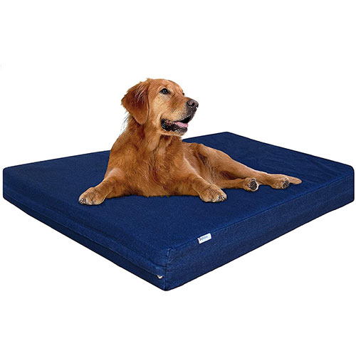 Dogbed4Less Foam Dog Bed