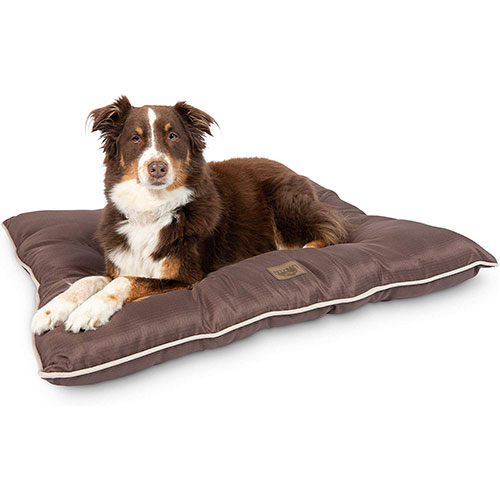 All Weather Dog Bed