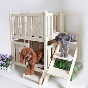 dog bunk beds