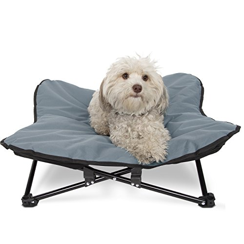 Paws & Pals Elevated Dog Bed, Indoor- Outdoor